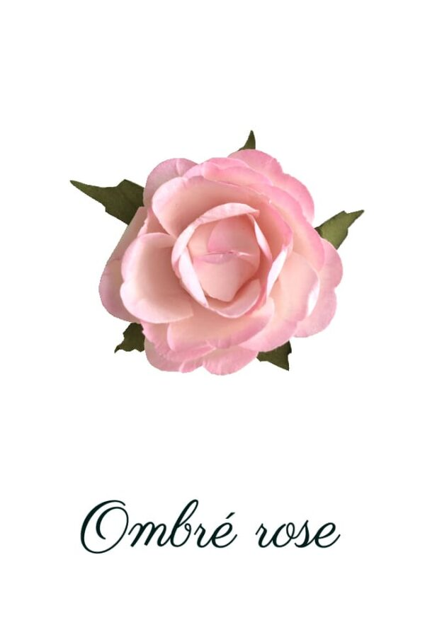 Ombré rose copie