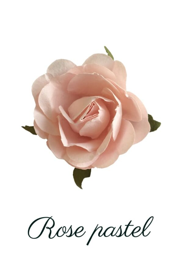 Rose en papier rose pastel copie