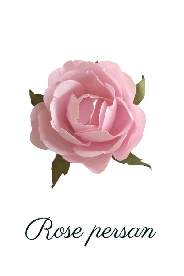 Rose en papier rose persan copie