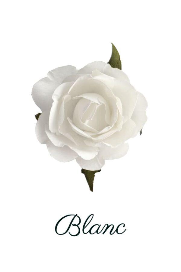 Rose papier blanc