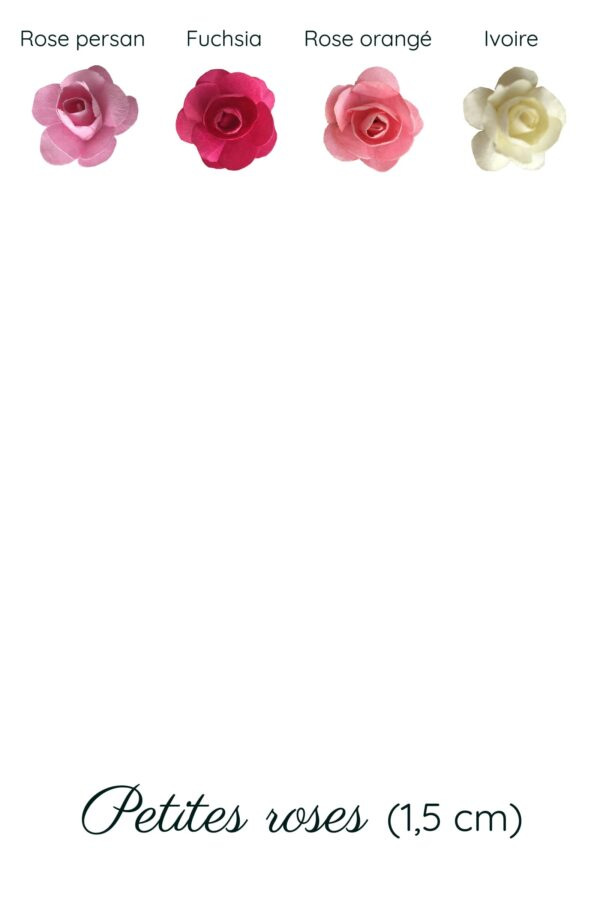 rose petites gamme fleur